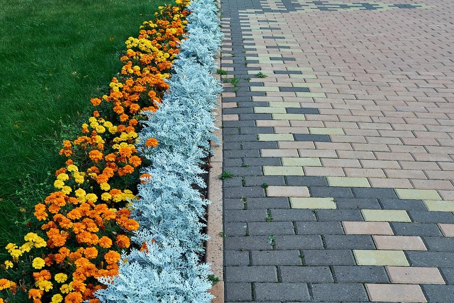 Different Steps for Landscape Renovation