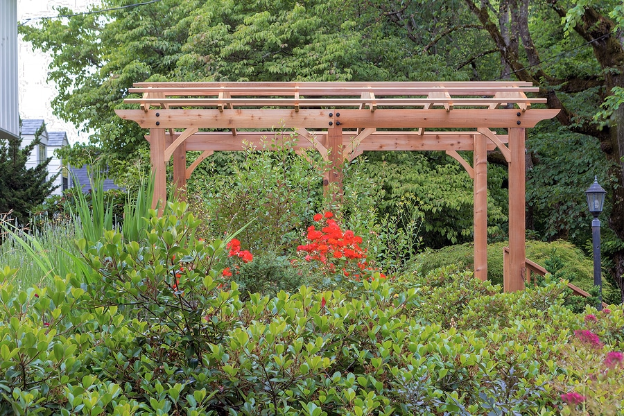 Outdoor Structure Options for Your Backyard: Which One is Right for You?